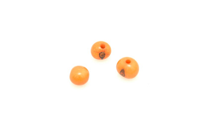 graine açaï orange environ 10mm x10pcs