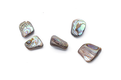 coquillage abalone nugget 10x14mm x1pce