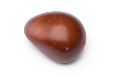 tagua graine  environ 40mm chocolat x1pc